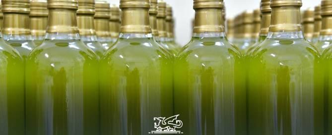 Come conservare l'olio extravergine di oliva
